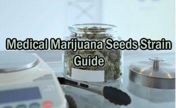 Medical-Marijuana-Seeds-Strain-Guide
