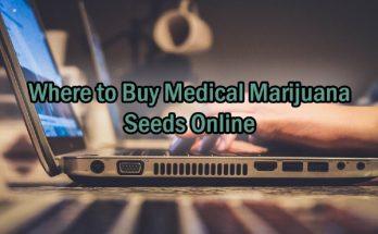 Where-to-Buy-Medical-Marijuana-Seeds-Online