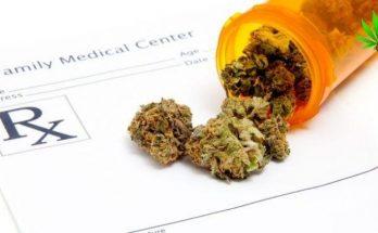medicinal cannabis strains